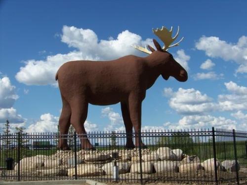 moose-jaw-002